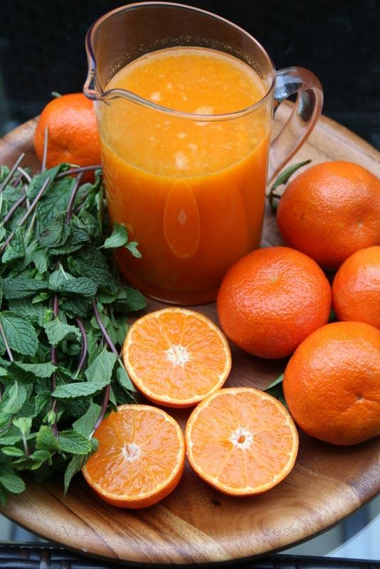 橘子莫希托的材料